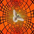 INCONTRI IN DIRETTA ——————————————————————————————- GIORNI FERIALI:  Ore 17.30 – Rosario Ore 18.00 – Messa Ore 18.30 – Vespri Martedì e Giovedì: Ore 15.30 – 17.30 Adorazione Eucaristica DOMENICA Ore […]